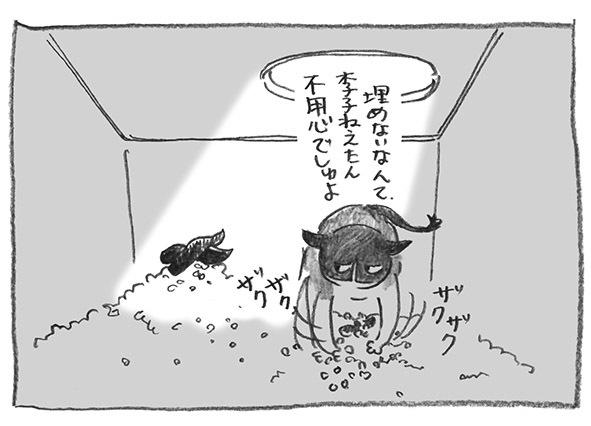 11-李子不用心