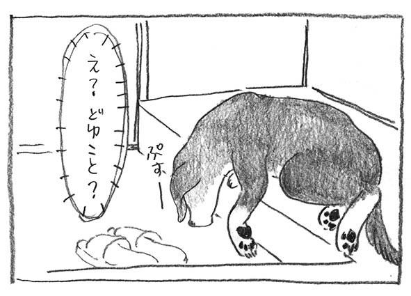 6-どゆこと