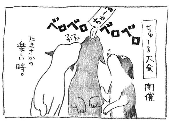 10-ちゅーる大会