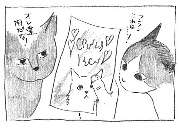 4-猫オヤツ