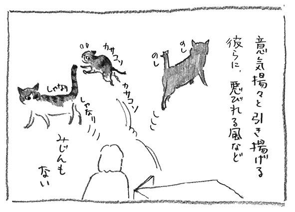 17-悪びれない