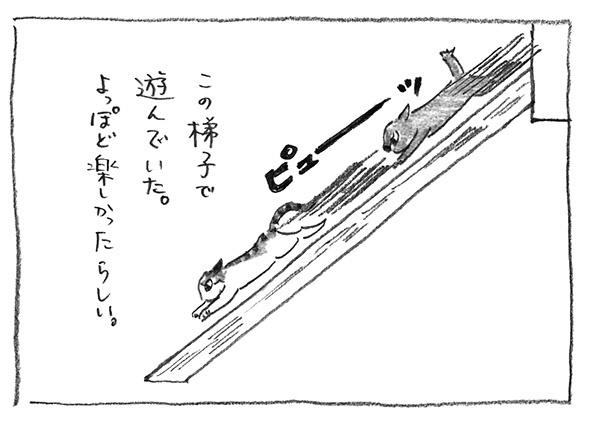 6-ぴゅーっ