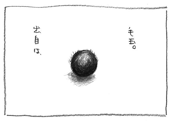 13-毛玉