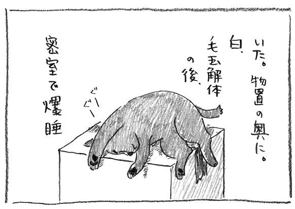 8-密室爆睡