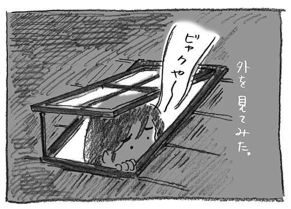 4-ビャクやー