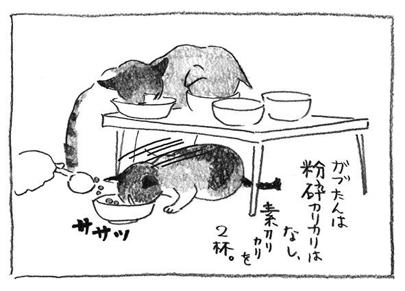 5-素カリカリ
