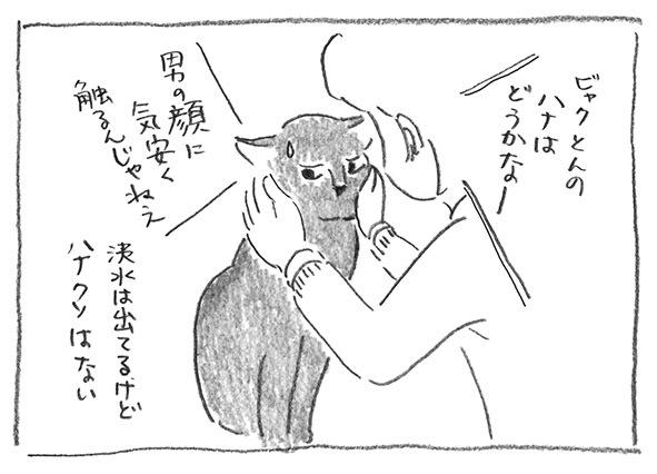 2-白の鼻点検