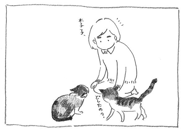 12-おや李子