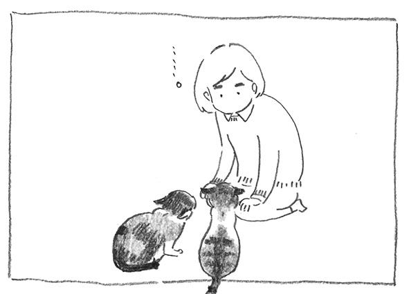 16-李子見る