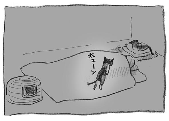 10-布団のぼり