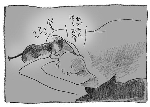 14-ガブお入り
