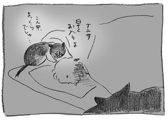 15-まっくら