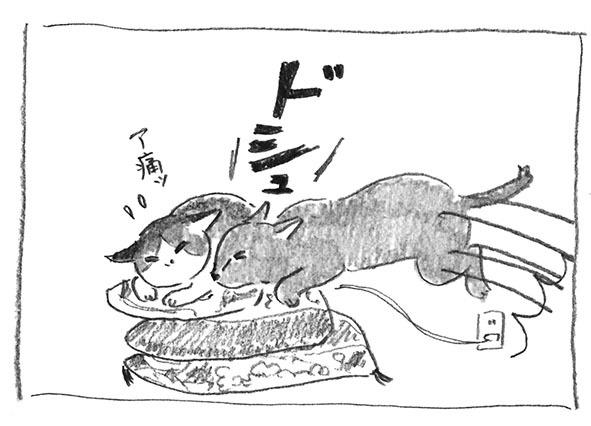 5-ドシュッ