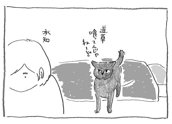 5-道草食うな
