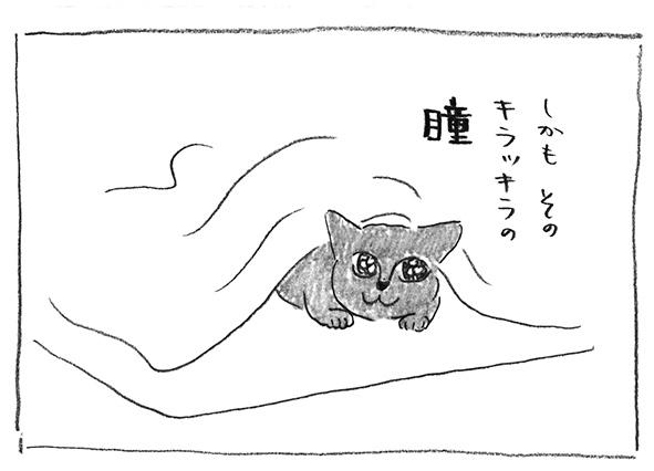 9-キラッキラの瞳