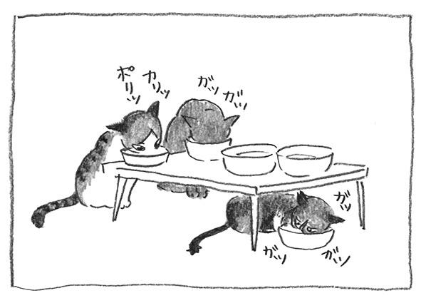6-食べる