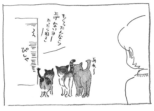 7-ピシャ