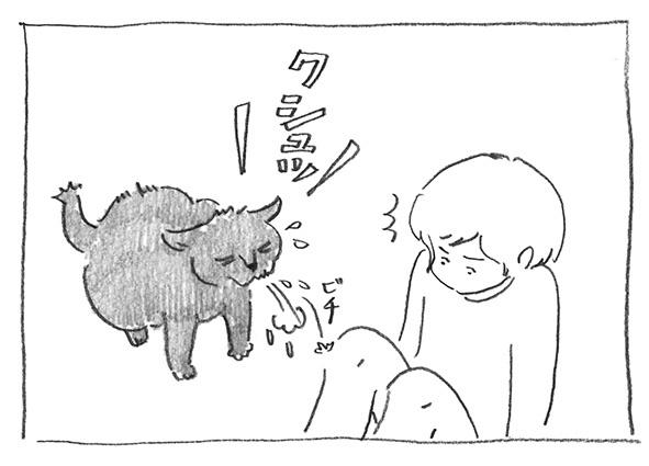 6-クシュッ