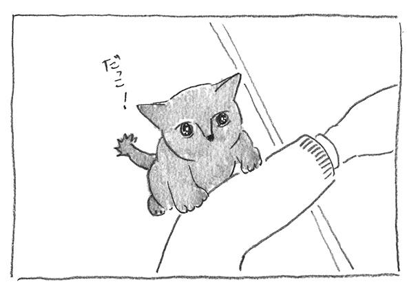 4-だっこ!