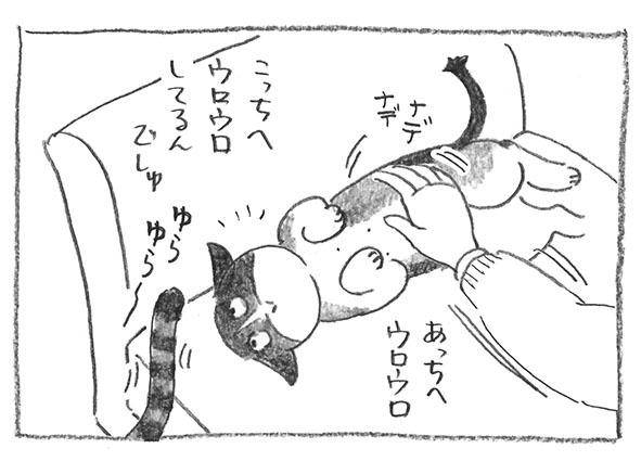 4-ウロウロ