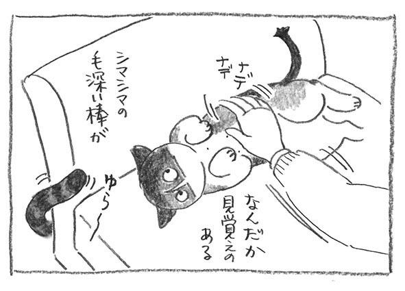 3-シマシマの棒