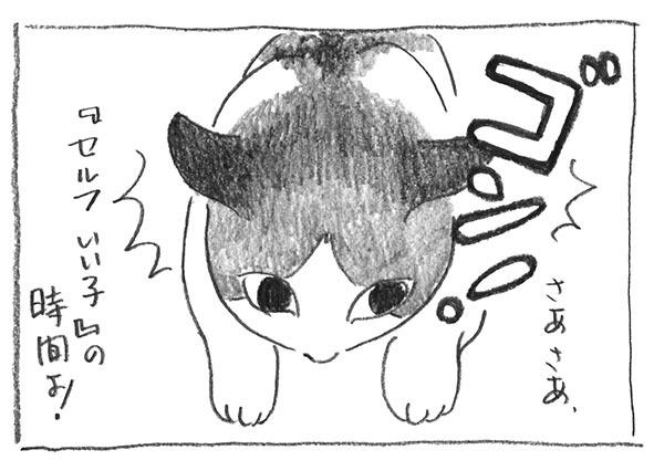 2-セルフいーこ