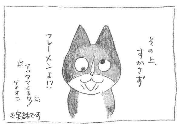 7-その上フレーメン