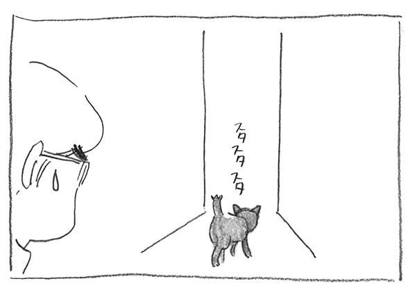 14-すたすた