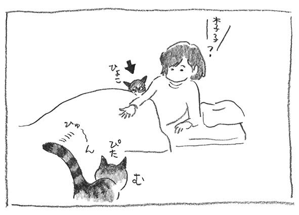 6-再ぴた