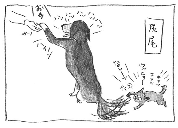 2-尻尾遊び