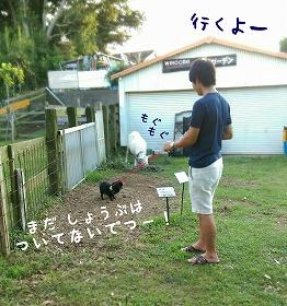 2017-08-07_212514.jpg