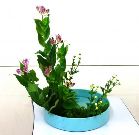 DSC00834-写景盛花様式本位170925
