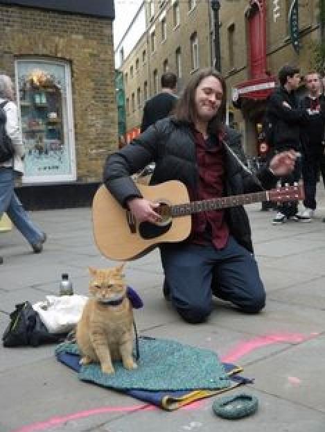 「猫の恩返し」で人生を救われた ジェームズ・ボーエンさん2