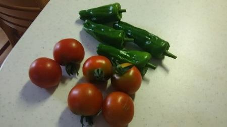 トマトとピーマンは普通