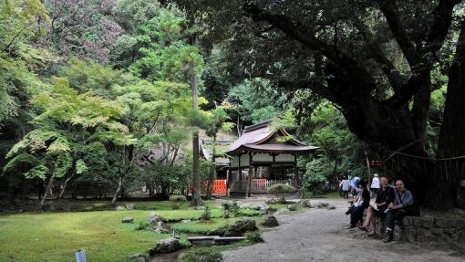 6844上賀茂神社179244