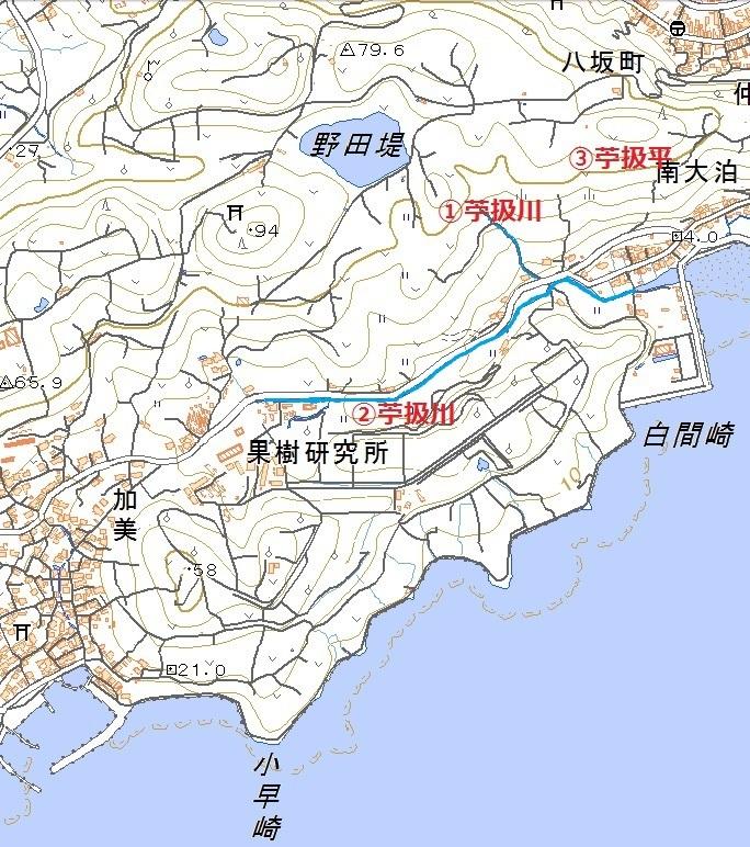 hayasaki001c.jpg