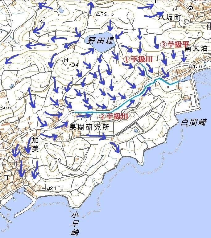 hayasaki_stream1.jpg