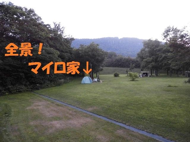 CIMG2068_P_2017080921363878a.jpg