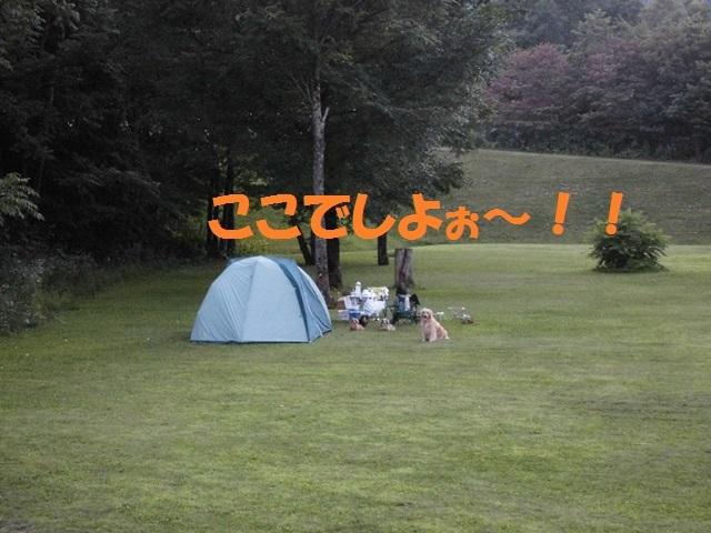 CIMG2069_P.jpg
