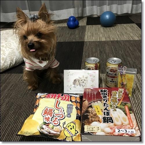 秋田からIMG_1515-20170923