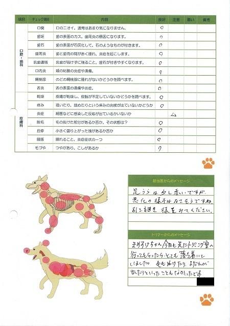 06172017動物病院18