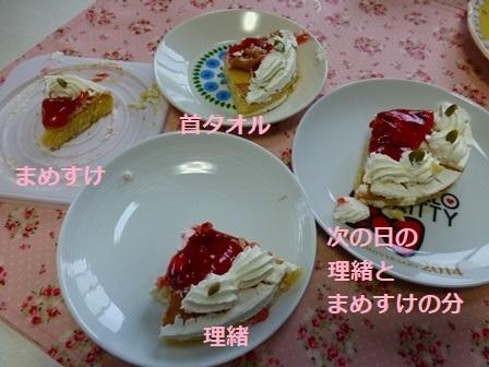 いちごバースデーケーキ9