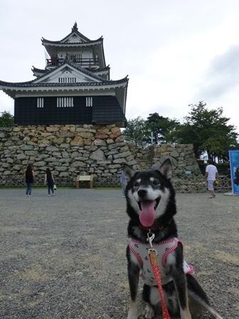 浜松城公園25