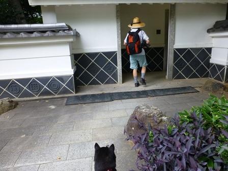 浜松城公園31