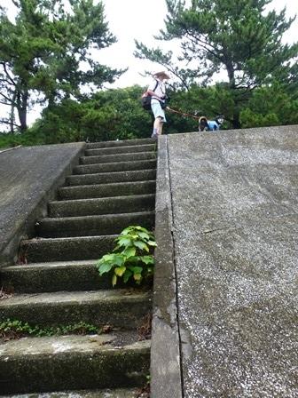 緑が浜公園24