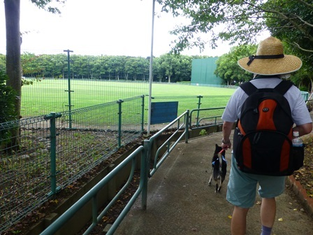 緑が浜公園26