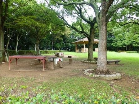 緑が浜公園34