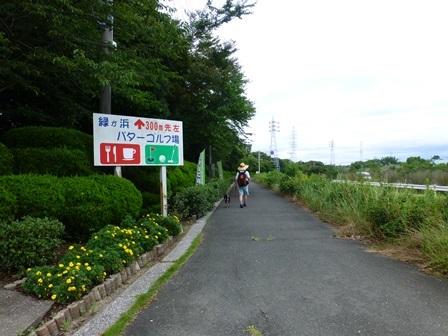 緑が浜公園44