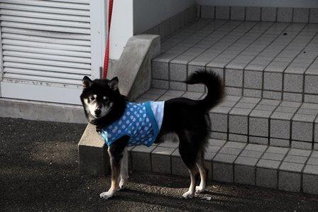 2017休暇村伊良湖7