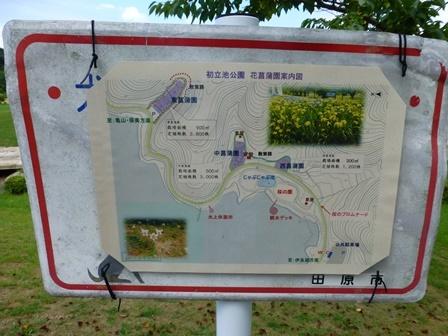 2017初立池公園 (3)
